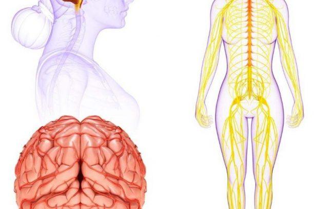 Pain Blog Topics
